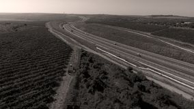Rows of vineyard before harvesting. In Dobrogea, Romania Europe, aerial view from drone, highway Royalty Free Stock Photos