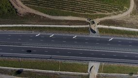 Highway and vineyards. Rows of vineyard before harvesting in Dobrogea, Romania Europe, aerial view from drone. Motorway crossing the vines stock footage