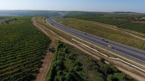 Highway and vineyards. Rows of vineyard before harvesting in Dobrogea, Romania Europe, aerial view from drone. Motorway crossing the vines stock video