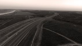 Rows of vineyard before harvesting. In Dobrogea, Romania Europe, aerial view from drone, Highway crossing the fields Stock Photography