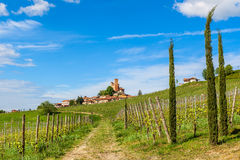 Rows of vineyards and small town in Italy. Royalty Free Stock Photography