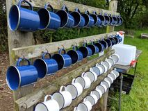 4 rows of white and blue camping mugs. Beakers cups lined up on a wooden stand hanging dangling hooked on to pegs straight lines ocd consistent ordered stock photo