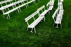 Rows of White Park Benches for Sitting on Green Grass Stock Photo