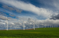 Rows of wind turbines Stock Photo