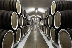 Rows of wine barrels Stock Photos