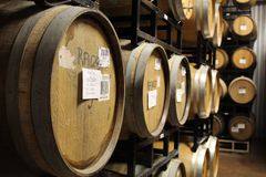 Rows of wine-filled cask barrels at a winery cellar. royalty free stock images