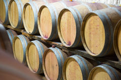 Rows of   wooden barrels Stock Photography