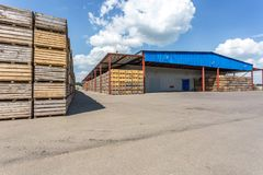 Rows of wooden crates boxes and pallets for fruits and vegetables in storage stock. production warehouse. Plant Industry royalty free stock photo