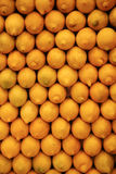 Rows of yellow lemons. Close up of rows of yellow lemons Royalty Free Stock Photo