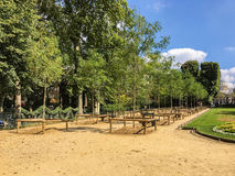 Rows of young trees in the Jardin de Luxembourg, Paris, France Royalty Free Stock Photo