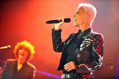 Roxette Stock Image