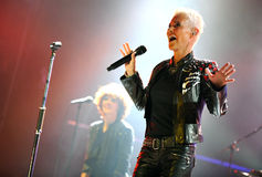 Roxette Royalty Free Stock Photography
