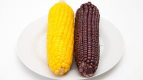 Roxo amarelo e escuro do milho Foto de Stock