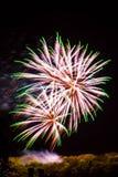 Roxo branco da celebração dos fogos-de-artifício do fogo de artifício com picos verdes Fotos de Stock Royalty Free