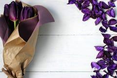 Roxo das tulipas: felicitações, o 8 de março dia internacional do ` s das mulheres, o 14 de fevereiro dia do ` s do Valentim, fer Imagens de Stock