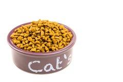 Roxo do ` s do gato que come a bacia roxa foto de stock