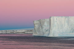 Roxo polar Foto de Stock