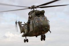 Royal Air Force pumy helikopter ląduje przy Królewskim zawody międzynarodowi Zdjęcie Stock