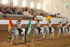 Royal Andalusian School of Equestrian Art Royalty Free Stock Photo