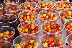 Royal ann & bing cherries. Rows of royal ann cherries in clear cups with a cup of bing cherries too Stock Image