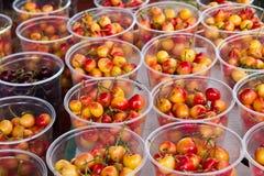 Royal ann & bing cherries Stock Image