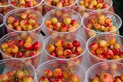 Royal ann cherries Stock Photos