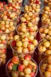 Royal ann cherries Royalty Free Stock Photo