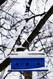 Royal Blue birdhouse in the snow Royalty Free Stock Images