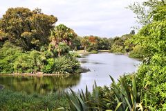 Royal Botanic Gardens, Melbourne Stock Images