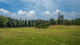 Royal botanical gardens, Kandy, Sri Lanka Royalty Free Stock Images