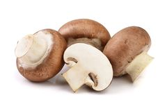Royal Brown champignon with half isolated on white background.  stock image