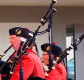 Royal Canadian Mounted Police Piper - RCMP Royalty Free Stock Image