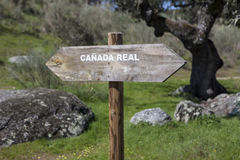 Royal cattle track signpost, Spain Royalty Free Stock Photography