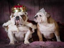 Royal couple Stock Photo