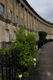 Royal Crescent in Bath, Somerset, England. The Royal Crescent in Bath, Somerset, England, UK designed and built between 1767 and 1775 by John Wood the younger. A Royalty Free Stock Image