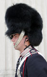 Royal Danish Guard Stock Photo