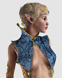 Royal Elf Royalty Free Stock Image