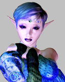 Royal Elf Royalty Free Stock Photos