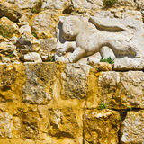Royal emblem of Sultan Baybars. Lion, sculptured in stone, the royal emblem of Sultan Baybars. The Nimrod Fortress in  Israel Royalty Free Stock Photo