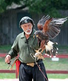 The royal falconer at the renaissance fair Stock Image