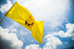 Royal flag of king rama IX in Thailand Royalty Free Stock Image