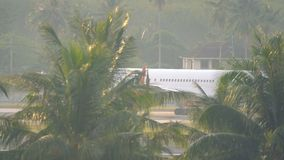 Royal Flight Boeing rides behind palm trees. PHUKET, THAILAND - NOVEMBER 25, 2016: Boeing of Royal Flight airways rides on taxiway behind tropical trees stock footage