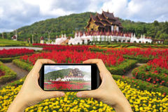 royal flora park in Chiangmai, Thailand. Taking photo on smart p royalty free stock images
