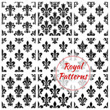 Royal floral vector seamless patterns set Royalty Free Stock Photo
