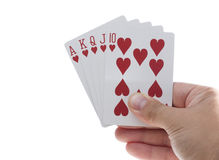 Royal Flush of Hearts stock images