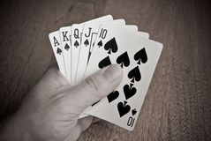 Royal Flush in Spades Stock Images