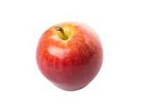 Royal Gala Apple II Stock Photo