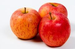 Royal Gala Apples. Three delicious royal gala apples Royalty Free Stock Photography