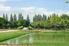 Royal garden. At bangkok thailand Royalty Free Stock Images