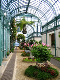 Royal Greenhouse in Brussels Royalty Free Stock Images